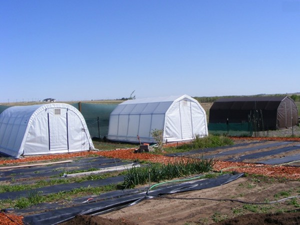 12 ft. Wide Portable Greenhouse Kits: 12 Foot Wide ...